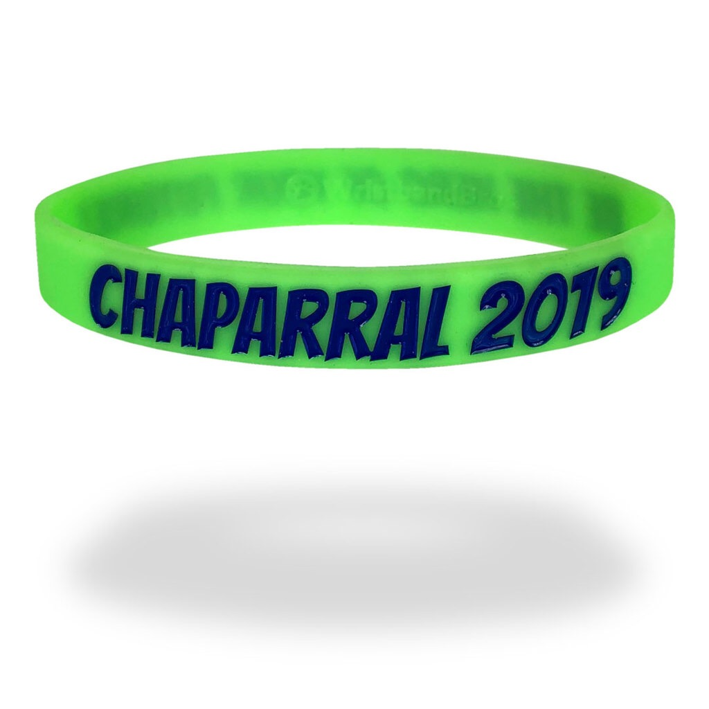green event wristband with blue text commemorating a family reunion